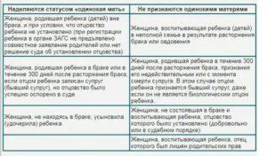 Что Такое Мать Одиночка По Закону В России