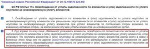 Судебная практика статья 120 семейного кодекса рф алименты супруге
