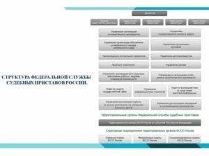 Как определить подведомственность службы судебных приставов