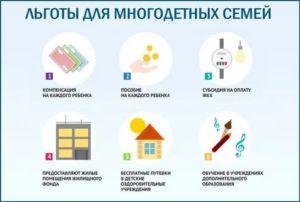 Какие льготы для многодетных семей в беларуси