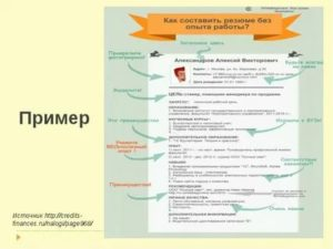 Резюме студента для прохождения практики образец