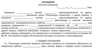 Образцы соглашения об уплате алиментов на содержание бывшего супруга