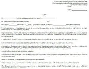 Как Написать Заявление В Отдел Опеки И Попечительства