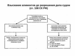Очередность выплаты алиментов текущих и долга по алиментам