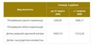 Льготы По Потере Кормильца В 2020 В Москве