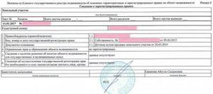 Выписка о содержании правоустанавливающих документов 2020