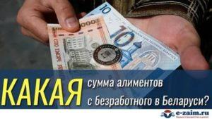 Как платить алименты безработному в белоруссии