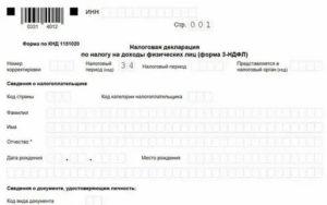 Налоговая декларация 2019 ип скачать программу бесплатно с официального сайта ифнс