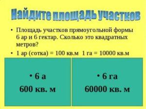 Сколько метров квадратных в одном гектаре земли