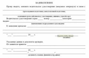 Заявление в гибдд о выдаче водительского удостоверения