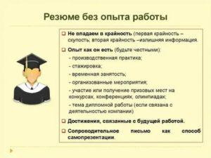 Образец резюме студенту без опыта работы