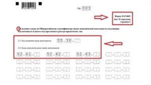Форма р14001 добавление оквэд образец заполнения