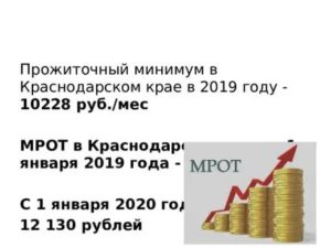 Прожиточный минимум ребенка в краснодарском крае в 2020 году и алименты